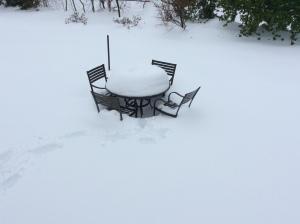 Photo Feb 13, 10 08 54 AM