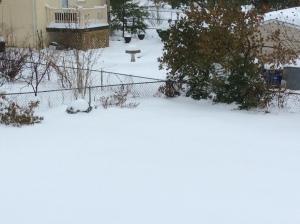 Photo Feb 13, 10 09 19 AM