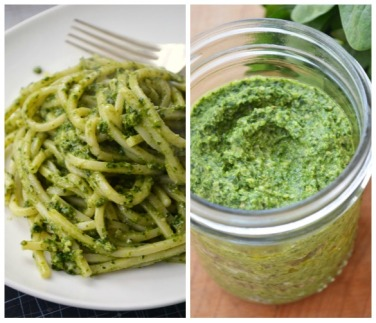 kale-pesto-collage